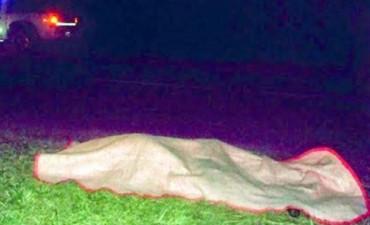 Muere un hombre al ser atropellado por vehículo que se dio a la fuga en Ruta 27