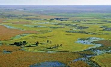 Iberá: productores analizarán el proyecto de Parque Nacional