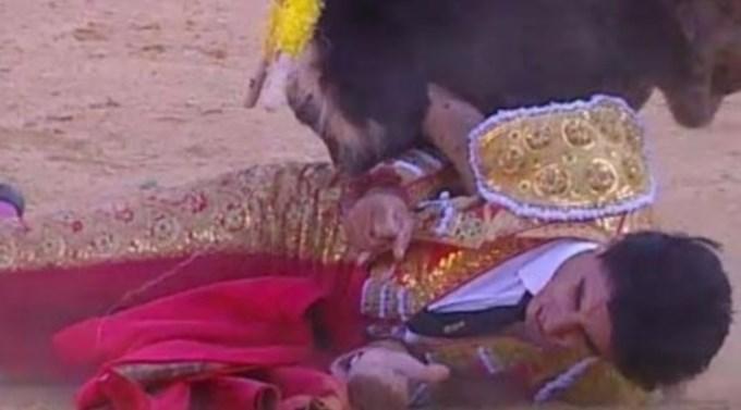 Torero español murió tras brutal cornada