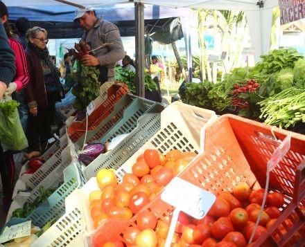 El precio del tomate aumentó casi un 200% en góndolas en la última semana