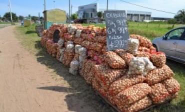 Cebolla: el precio fluctúa en base a los capitales y el clima