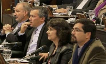 Tras 8 días, ingresó la necesidad de reforma a la Cámara de Diputados