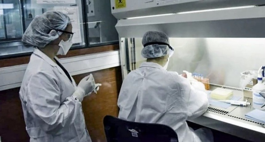 Coronavirus: confirmaron 250 muertes y 11.905 nuevos contagios