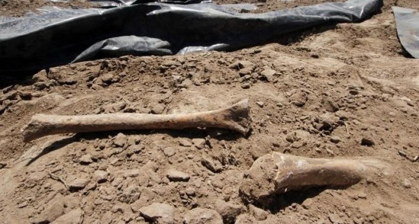 Hallaron restos óseos en el fondo de una obra en La Cruz