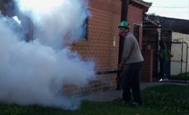 Virus chikungunya: la Comuna sigue con los controles y hay alerta por caso en Paraguay