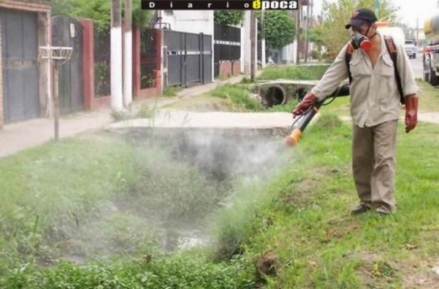 """Advierten """"alto riesgo"""" de brote de dengue en la costa del Uruguay"""