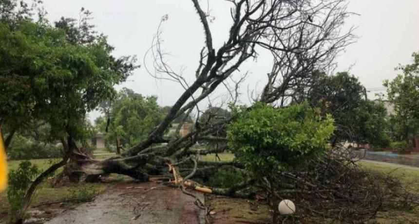 La tormenta dejó destrozos en la red eléctrica y varias localidades sin energía