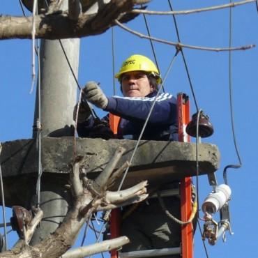 Tras la caída de 67 postes por un temporal, DPEC reestableció el servicio