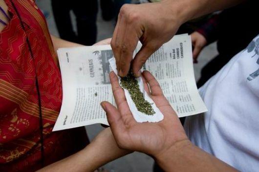 Se mantienen las cifras del consumo de marihuana