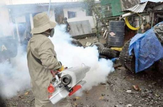 Dengue: los repelentes y la limpieza, únicas armas contra la enfermedad