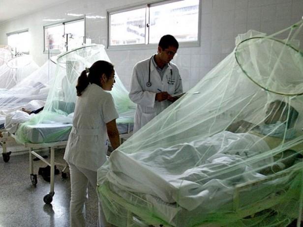 Detectaron dos nuevos casos de dengue en Misiones y en Santa Fe