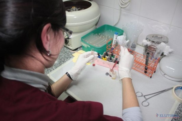 Descartaron un nuevo caso de dengue y son 6 los diagnósticos sospechosos