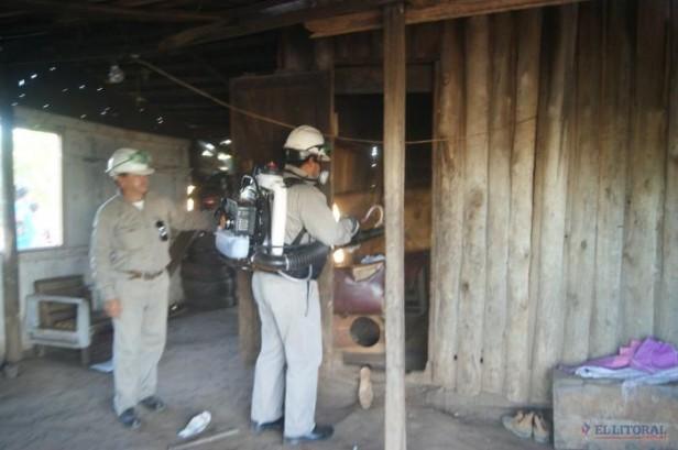 Dengue: nuevo caso en Capital y suman 7 los sospechosos
