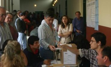 Colombi aseguró que en una semana se resolverá si desdoblan las elecciones