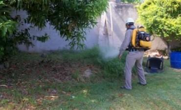 Tras nuevo caso de dengue, Salud intensifica fumigaciones y reitera estar alerta ante síntomas