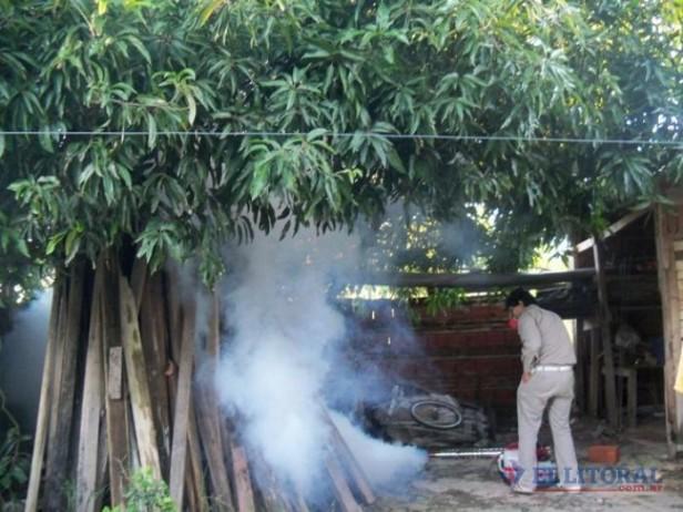 Dengue: hay dos nuevos casos y suman 11 los sospechosos