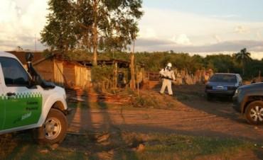 Dengue: el NEA reportó 43 muestras y crecen los casos autóctonos en el país