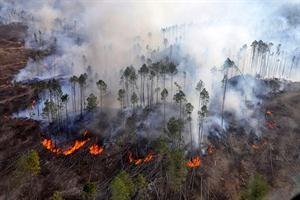 Sigue activo el incendio en Córdoba y lo califican como