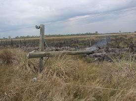 Quema de pastizales tiró postes y dejó sin energía a parajes